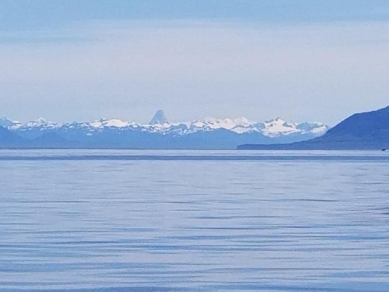 """<a href=""""/node/978"""">Ice & Sea</a>"""